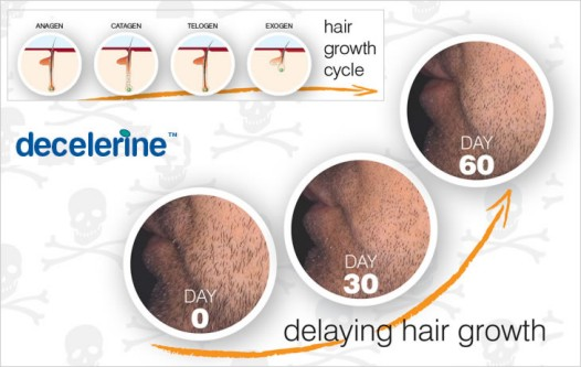 Anagen Is The Active Hair Growth Phase In The Hair Growth Cycle It ...